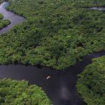 Amazônia 4