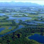 Pantanal 2